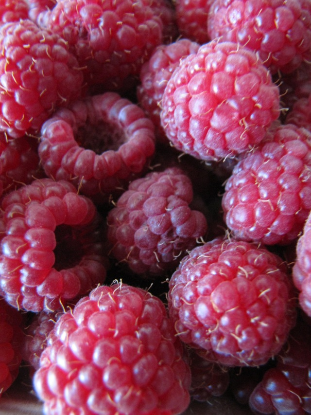 Delicious, red raspberries