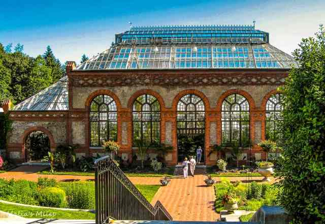 BIltmore-Conservatory