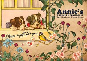 gift-certificate-doggie-2012