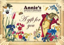gift-certificate-frog-2012